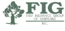First Insurance Group
